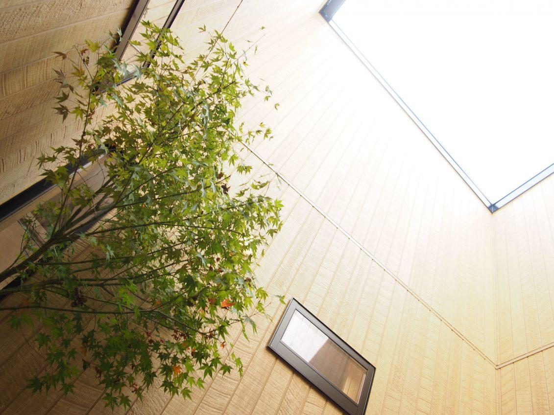 施工事例:中庭を囲む平屋の住まい
